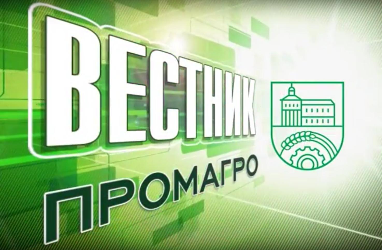 Мостовик новости июнь 2015